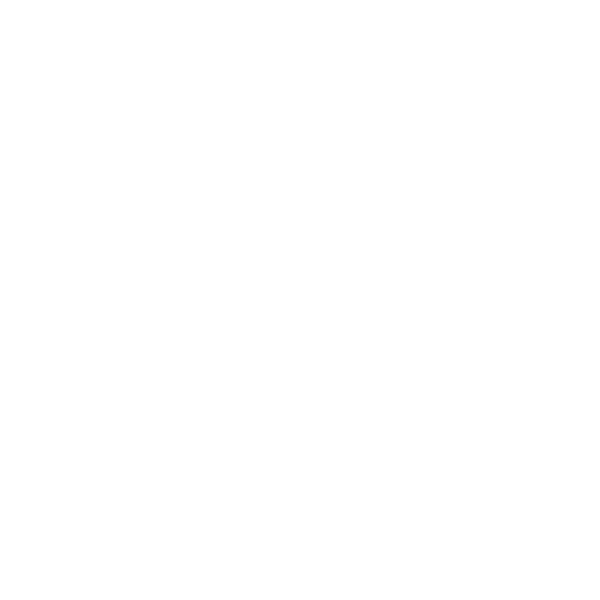 Schutzschild Icon